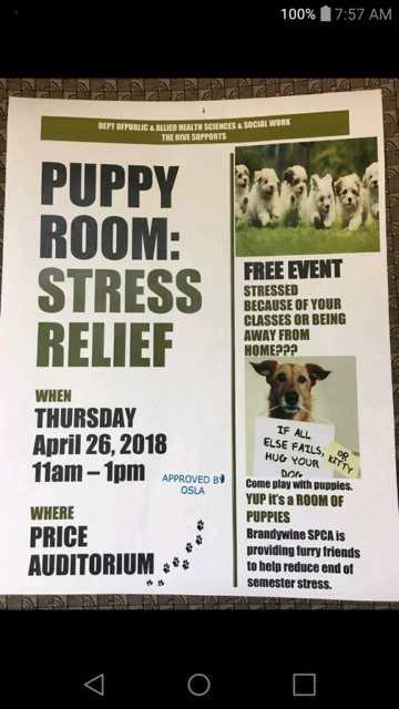 Stress Dugs